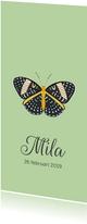 Geboortekaartje in mintgroen met een mooie vlinder