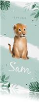 Geboortekaartje jongen leeuw waterverf