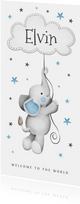 geboortekaartje jongen lief sterretjes wolkje olifantje