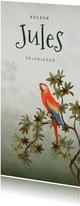Geboortekaartje jungle dieren papegaai groen