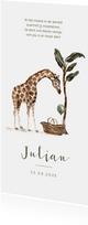 Geboortekaartje jungle giraf baby mandje boom