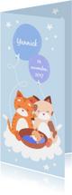 Geboortekaartje Knuffelkatten jongen