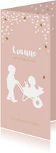 Geboortekaartje kruiwagen met baby zusje