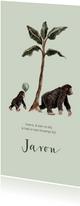 Geboortekaartje mama aap met kleine aap en ballon