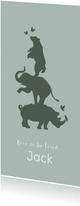 Geboortekaartje silhouet neushoorn, olifant en beer