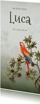 Geburtskarte Papagei in Dschungel