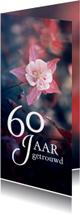 Jubileum 60 jaar getrouwd bloem