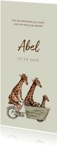 Lichtgroen geboortekaartje met giraffen op een fiets