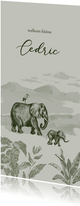 Olijfgroen jungle geboortekaartje met getekende olifanten