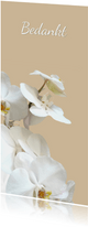 Rouwkaart bedankt hemels witte orchidee