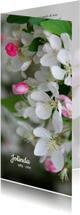 Rouwkaart bloesem sierappel