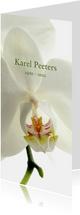 Rouwkaart witte bloemen