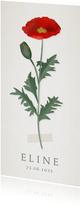 Vintage botanisch geboortekaartje met klaproos illustratie