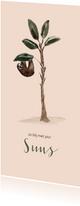 Zachtroze geboortekaartje luiaard in een boom