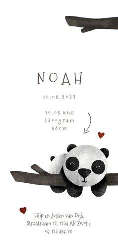 Geboortekaartje tweeling panda's met takjes lief 3
