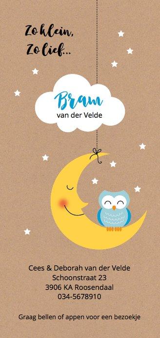 Blauw uiltje op maan met wolk en sterretjes Achterkant