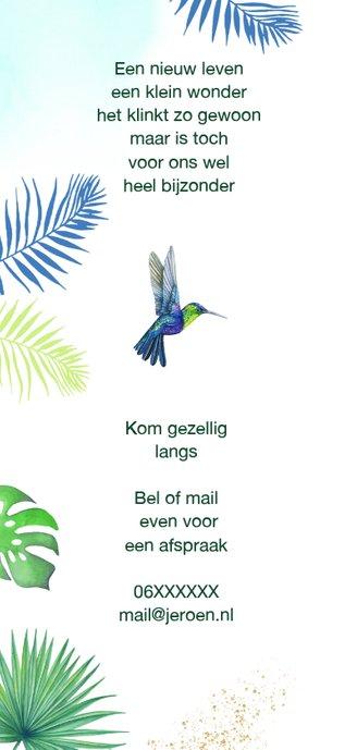 Geboorte kolibrie  tropisch 2