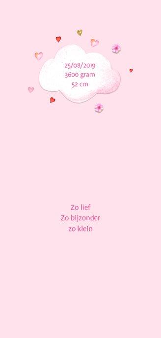 Geboorte luchtballon hartjes 2
