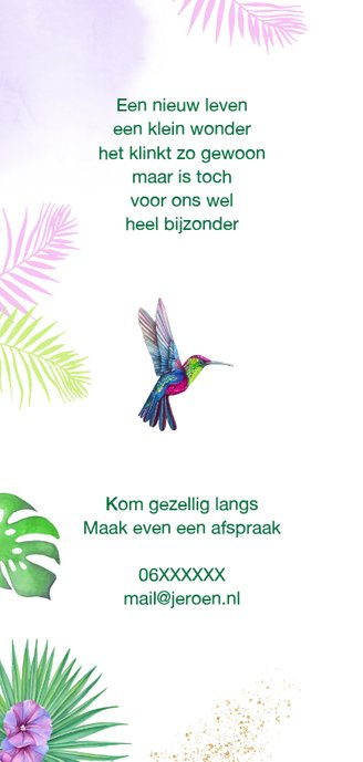 Geboorte meisje kolibrie tropisch 2