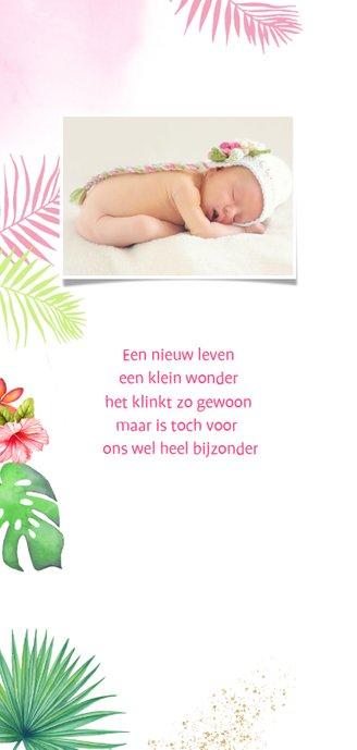 Geboorte meisje toekan tropisch 2
