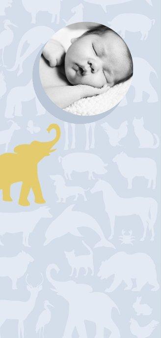 Geboortekaart Animal sky tikje retro grijs blauw 2