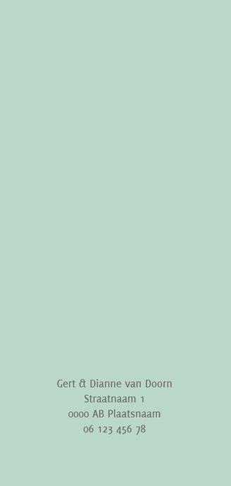 Geboortekaart langwerpig pictogrammen blauw - BC Achterkant