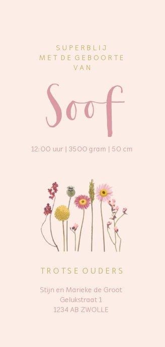 Geboortekaartje droogbloemen roze Achterkant