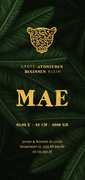 Geboortekaartje gouden panter silhouet met jungle bladeren  Achterkant