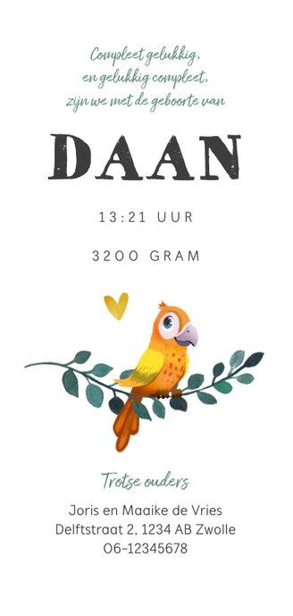 Geboortekaartje jongen bohemian met geïllustreerd vogeltje Achterkant