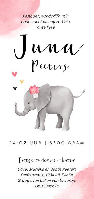 Geboortekaartje lief met olifantje voor meisje  Achterkant