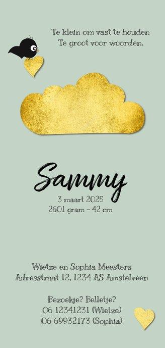 Mooi geboortekaartje met goud accenten en pasteltint Achterkant