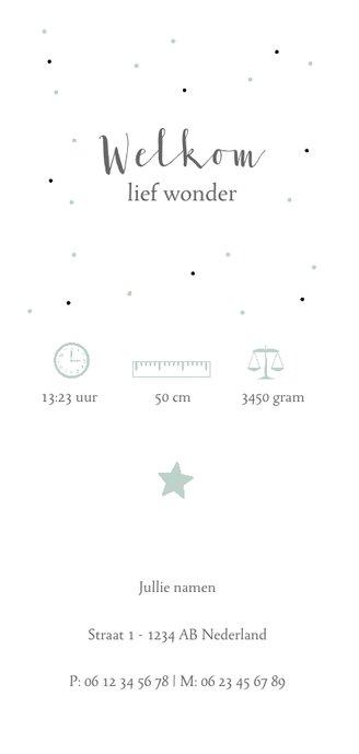Geboortekaartje panorama voor jongen met sterren en stippen Achterkant