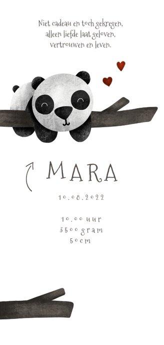 Geboortekaartje tweeling panda's met takjes lief 2