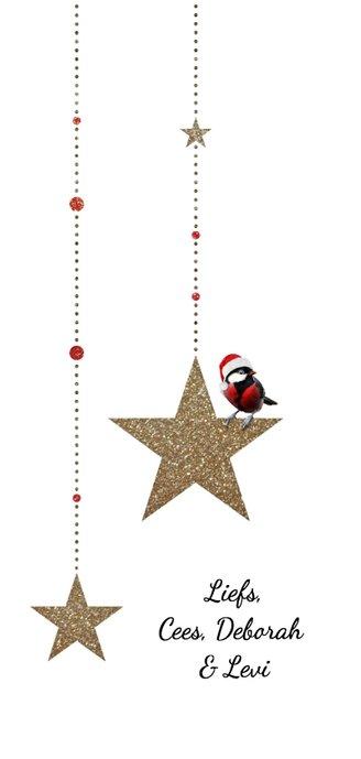 Kerstkaart gouden glitter ster met koolmeesje Achterkant