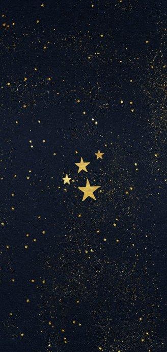 Kerstkaart langwerpig 2 foto's sterren gouden figuren Achterkant