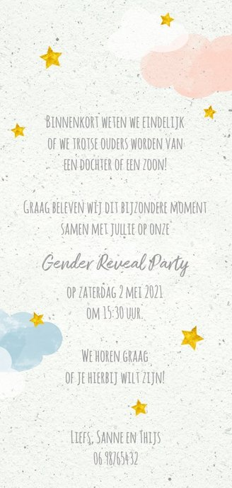 Uitnodiging boy or girl gender party in de wolken Achterkant
