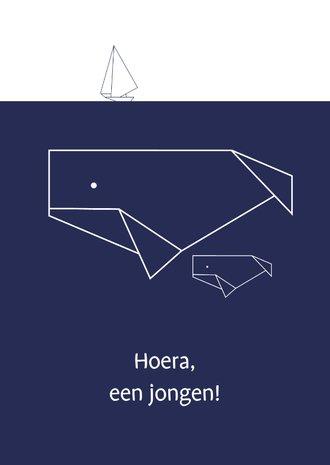 10 x 15 cm