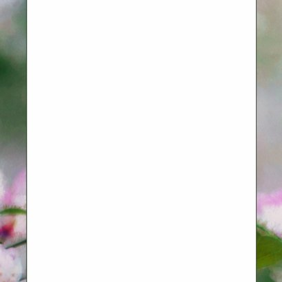 14193 Sterkte Bloemen 3