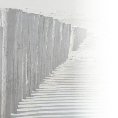 4K strandpalen werpen een schaduw 2