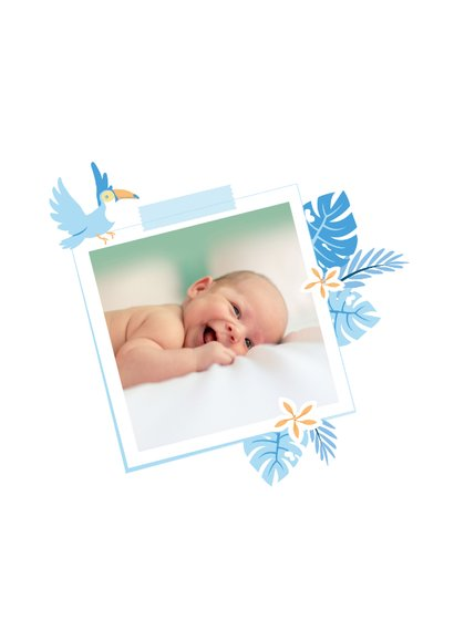 Babykaart jungle toekan blauw  2