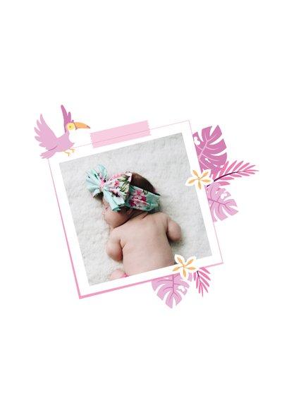 Babykaart jungle toekan roze paars  2