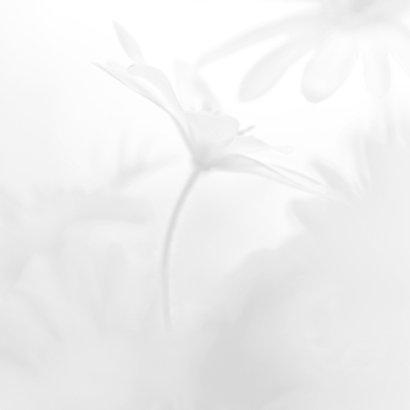 Bedanken met witte anemoon 2