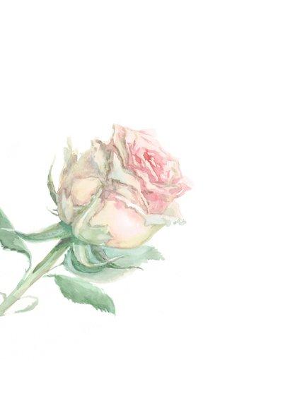 Bedankkaart met geschilderd roze roos 2