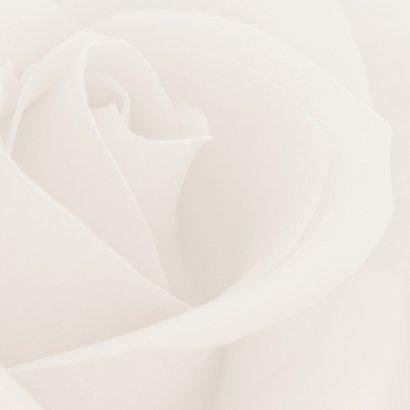 Bedankkaart na overlijden - rozen 3