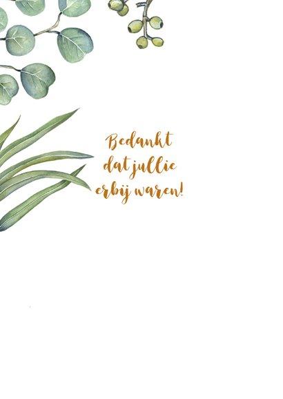 Bedankt euqalyptusblad 2