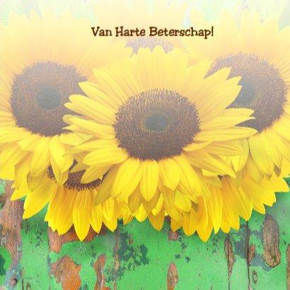 Beterschapskaart Zonnebloemen met hout en beterschap 3