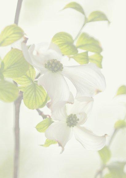 Bloemenkaart met Cornus 2