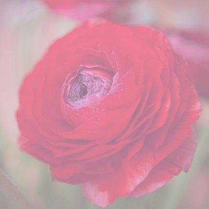 bloemenkaart ranonkel MM 3