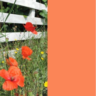 Bloemenkaart - Wilde bloemen 2