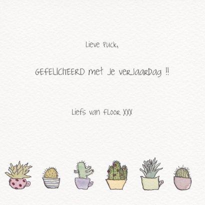 Cactus en vetplant 3